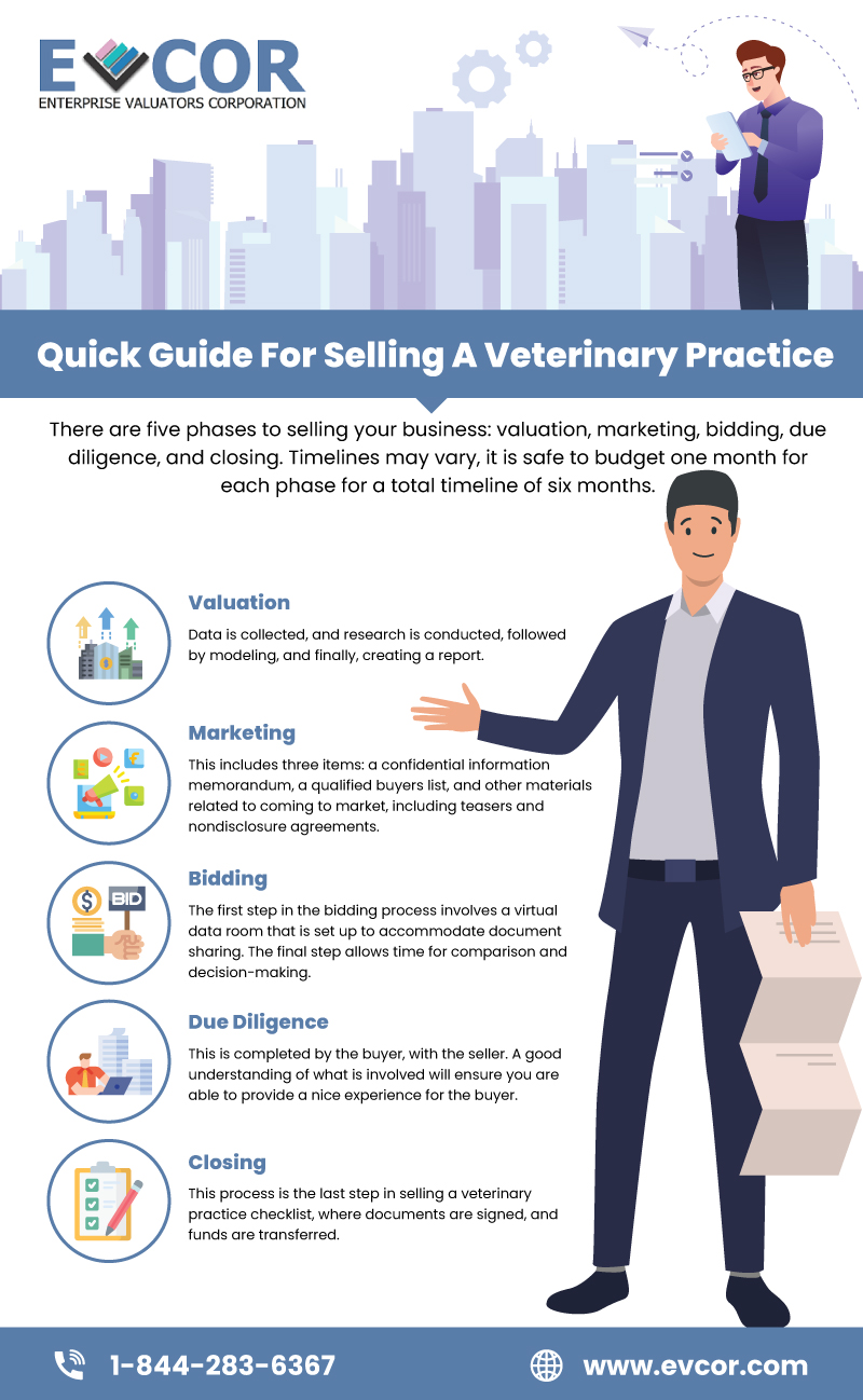 Selling A Veterinary Practice
